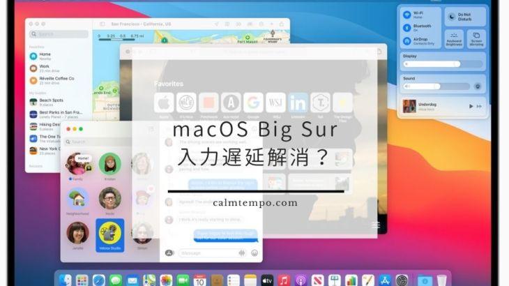 macOS Big Surになって文字入力の遅延が直った!?