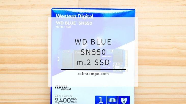 初m.2のSSDにWestern Digital SSD 1TB WD Blue SN550買ってみた。